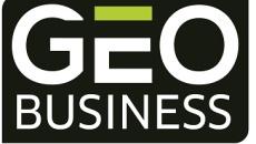 GEO Business 2020
