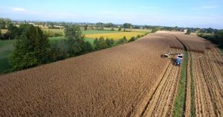 Precision Farming in Northern Italy