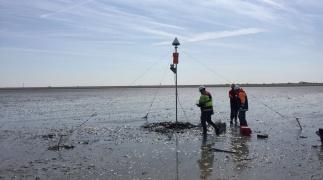 Monitoring: van de bebouwde kom tot de Waddenzee