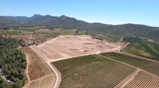 Inovação em uma vinícola catalã tradicional