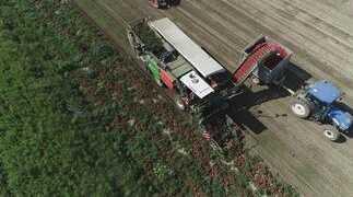 Agricoltura 4.0: GPS, Sensori e Big Data per Aziende Agricole sempre più efficienti e sostenibili